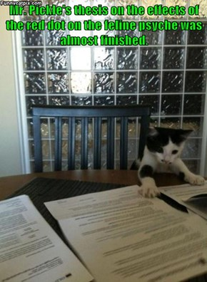 Mr. Pickle's thesis on the effects of the red dot on the feline psyche was almost finished.