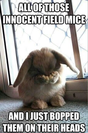Confessions of Bunny Foo Foo