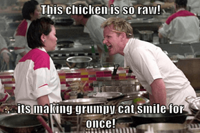 This chicken is so raw!  its making grumpy cat smile for once!