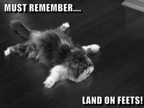 MUST REMEMBER....  LAND ON FEETS!