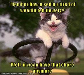 'Member how u sed u r tired of weedin teh flowerz?  Well, u woan have that chore anymore
