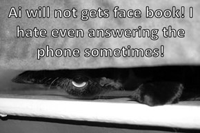 Ai will not gets face book! I hate even answering the phone sometimes!