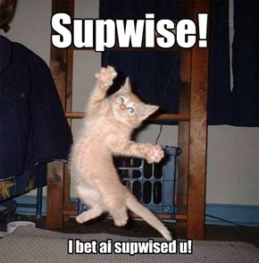 You totally surprised me, kitteh!