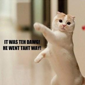 IT WAS TEH DAWG! HE WENT TAHT WAY!