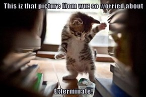 This iz that picture Mom wuz so worried about  Exterminate!