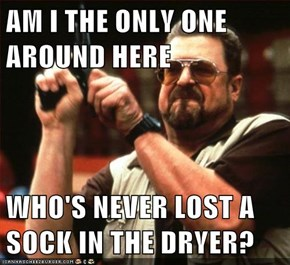 AM I THE ONLY ONE AROUND HERE  WHO'S NEVER LOST A SOCK IN THE DRYER?