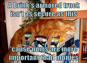 A Brink's armored truck isn't as secure as this  'cause noms are more important than monies