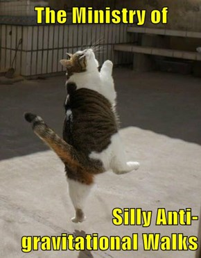 The Ministry of  Silly Anti-gravitational Walks