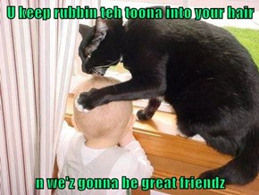 U keep rubbin teh toona into your hair  n we'z gonna be great friendz