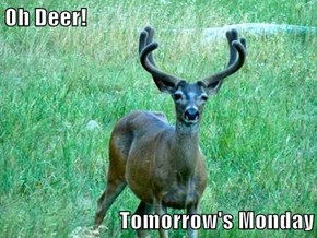 Oh Deer!  Tomorrow's Monday