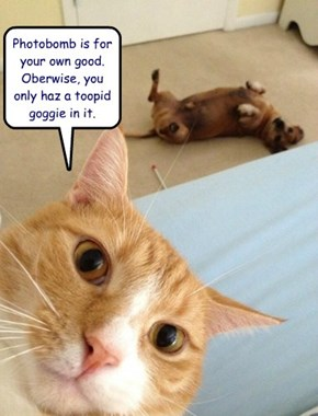 Photobomb is for your own good.  Oberwise, you only haz a toopid goggie in it.