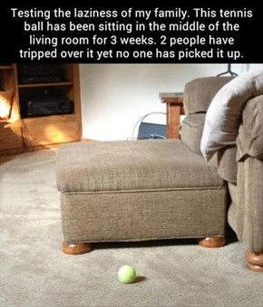 How to Test the Laziness of Your Household