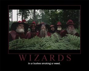 Damn Those Wizards