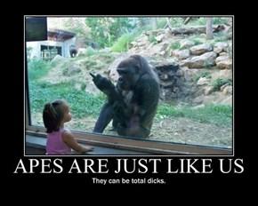 Those Damn Apes