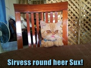 Sirvess round heer Sux!