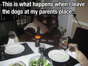 Grandparents Expect Proper Manners