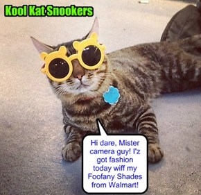 KKPS Picture Day an' Snookers makes quite an impression!