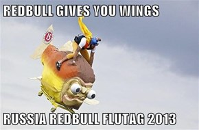 REDBULL GIVES YOU WINGS  RUSSIA REDBULL FLUTAG 2013