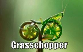 It Runs on Green Fuel