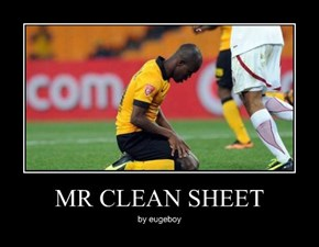 MR CLEAN SHEET