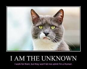 I AM THE UNKNOWN