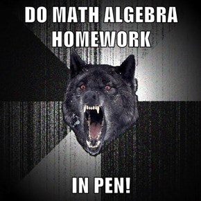 DO MATH ALGEBRA HOMEWORK  IN PEN!