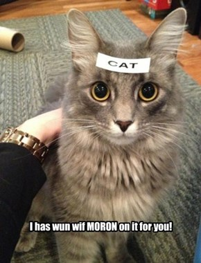 I has wun wif MORON on it for you!
