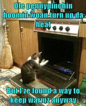 Ole pennypinchin hoomin woan turn up da heat  But I'ze found a way to keep warmz anyway
