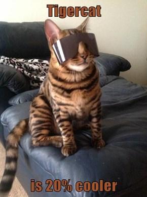 Tigercat  is 20% cooler