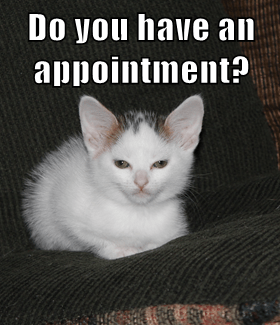 Do you have an appointment?