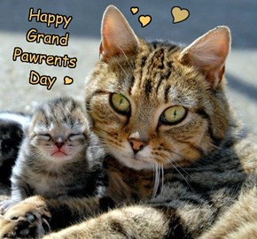 Happy Grand Pawrents Day