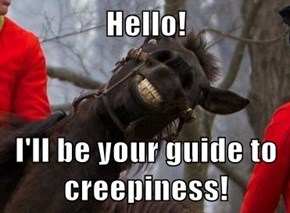 Hello!  I'll be your guide to creepiness!