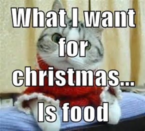What I want for christmas...  Is food