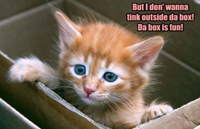 But I don' wanna tink outside da box! Da box is fun!