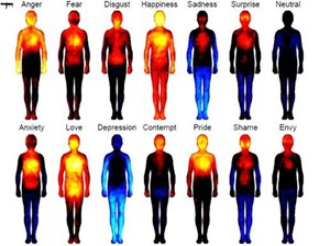 13 Emotions and How it Effects Your Body
