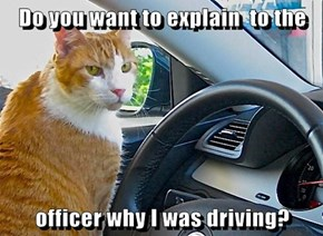 Do you want to explain  to the   officer why I was driving?