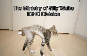The Ministry of Silly Walks ICHC Division