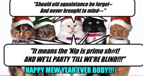 Happy Mew Year-- January 2 2014