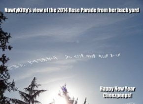 NawtyKitty's view of the 2014 Rose Parade from her back yard