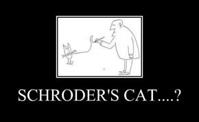 SCHRODER'S CAT....?