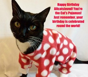 Happy Birthday Allcatsloved! You're the Cat's Pajamas! Just remember, your birthday is celebrated round the world!