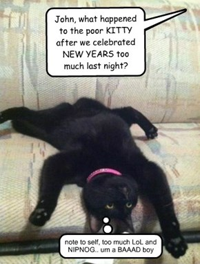 John, what happened to the poor KITTY after we celebrated NEW YEARS too much last night?