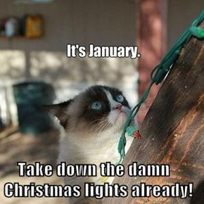 Take down the damn Christmas lights already!