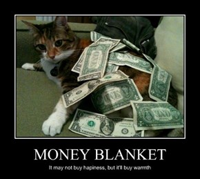MONEY BLANKET