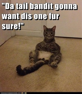 """Da tail bandit gonna want dis one fur sure!"""