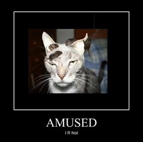 AMUSED