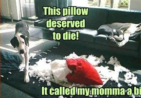 Momma! I has avenged you!