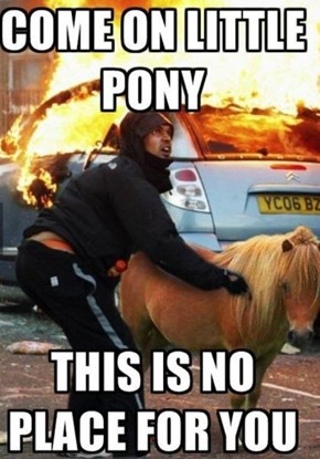 You Can Lead a Horse From Fire...No You Can't