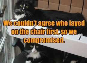 We couldn't agree who layed on the chair first, so we compromised.