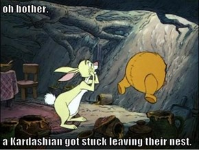 oh bother.   a Kardashian got stuck leaving their nest.